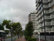 20060917-town.JPG