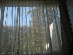 20061203-window.jpg