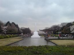 20070331-ueno.jpg.JPG