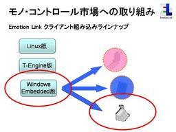 20070435-emb2.jpg.JPG
