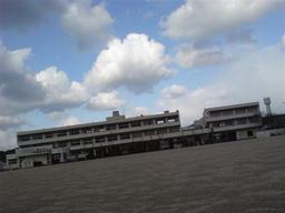 20071231-homeground.jpg