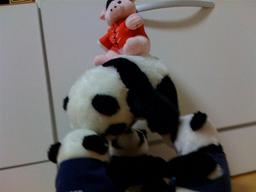 20080907-panda.jpg