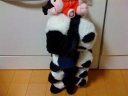20081013-panda.jpg