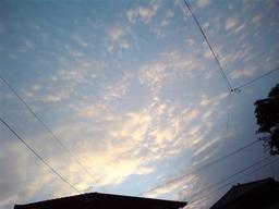 20081231-bluesky.jpg